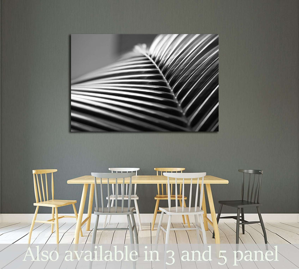 Black and white close up view of beautiful green palm leaf on natural background №2833 Framed Canvas Print