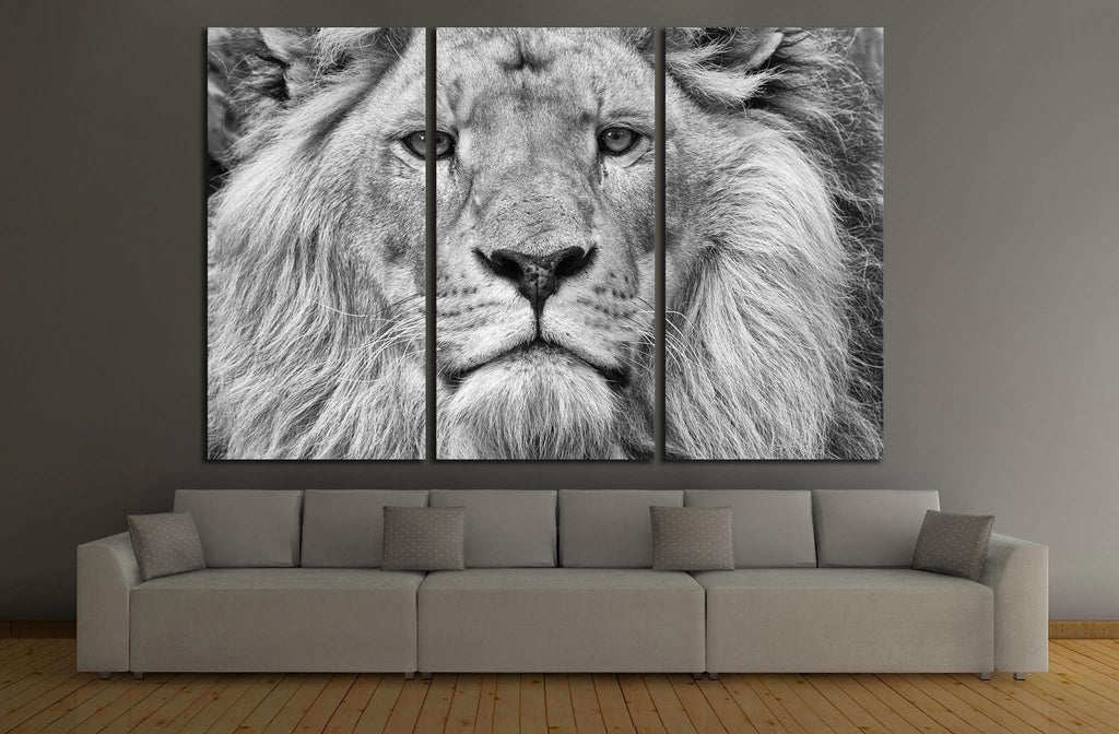 Black and White Lion №187 Ready to Hang Canvas Print