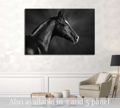 Black and white portrait of arabian horse №3259 Ready to Hang Canvas Print