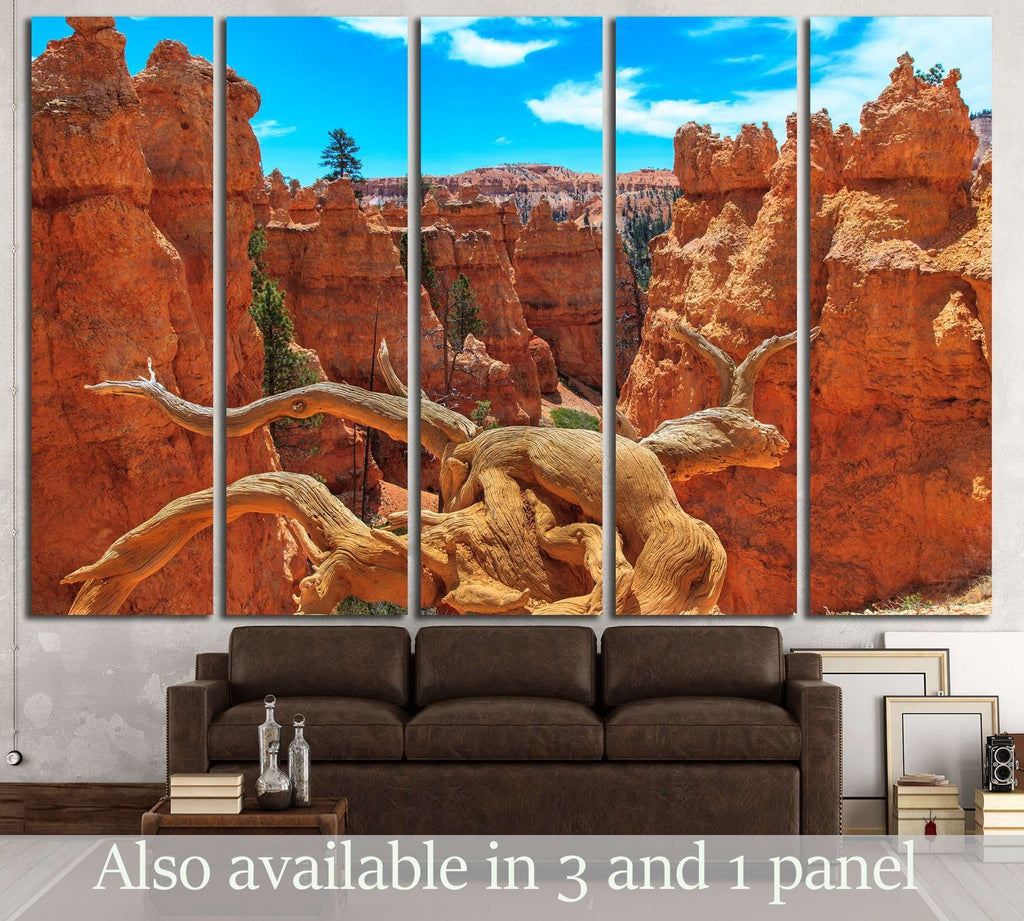 Bryce Canyon National Park №3192 Ready to Hang Canvas Print