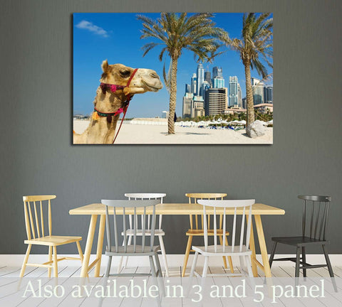 Camel at the urban building background of Dubai. UAE №2224 Ready to Hang Canvas Print