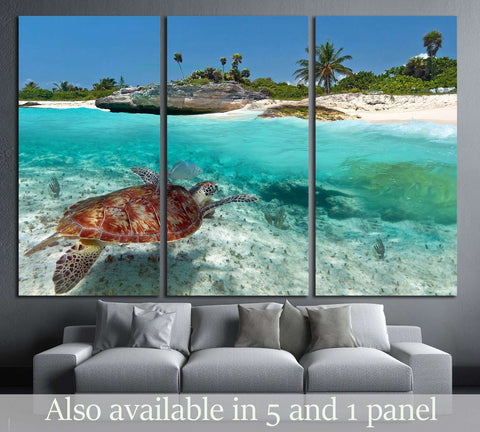 Caribbean Sea scenery with green turtle in Mexico №2502 Ready to Hang Canvas Print