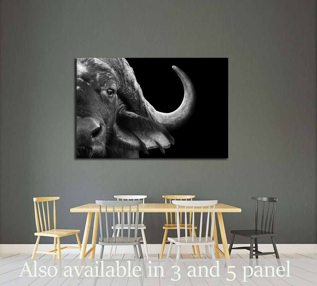 Close up black and white image of an african cape buffalo №2791 ready to hang