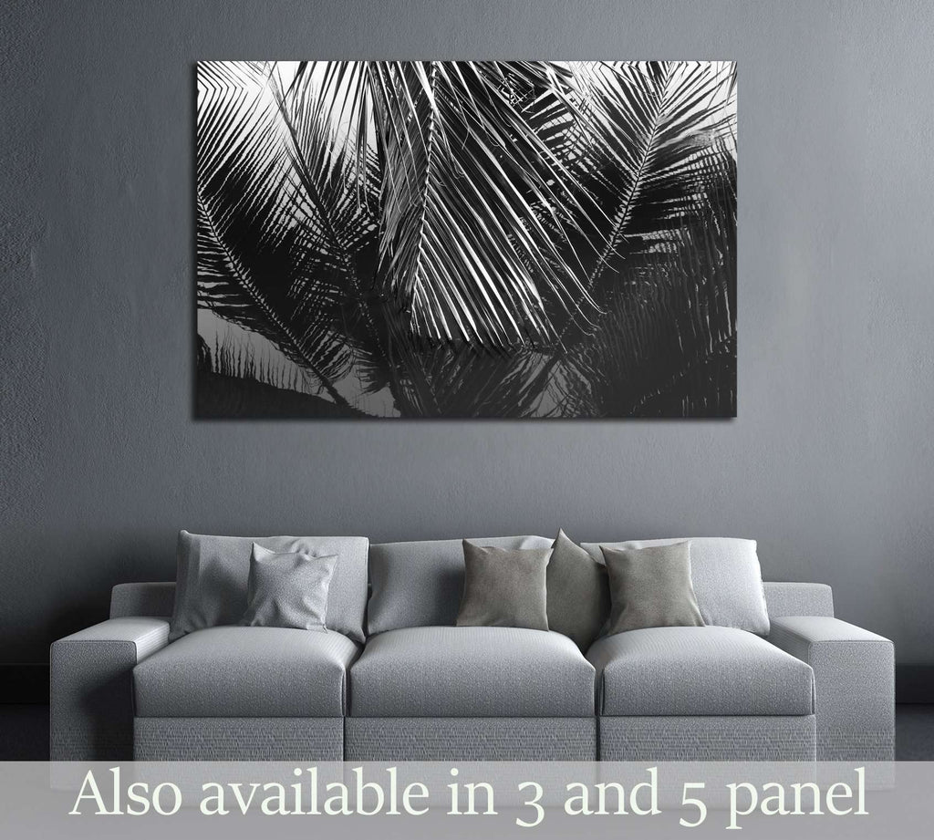Coconut leaves abstract reflection,black and white №2831 Ready to Hang Canvas Print