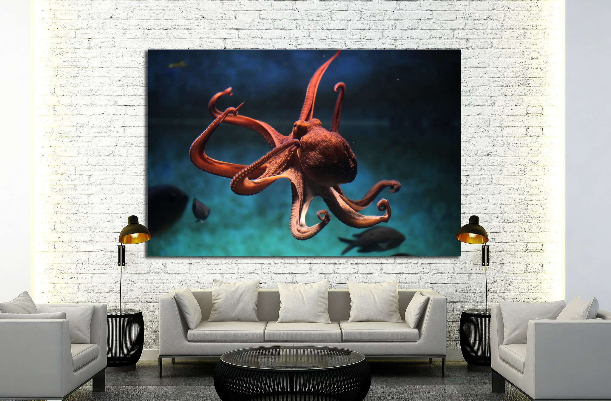 Common octopus (Octopus vulgaris). Wildlife animal №1856 Ready to Hang Canvas Print