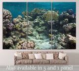 coral and fish №836 Ready to Hang Canvas Print