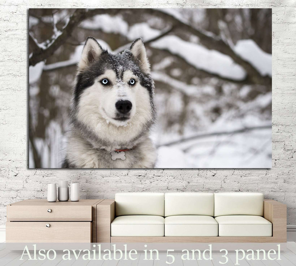 Dog and Snow №1 Ready to Hang Canvas Print