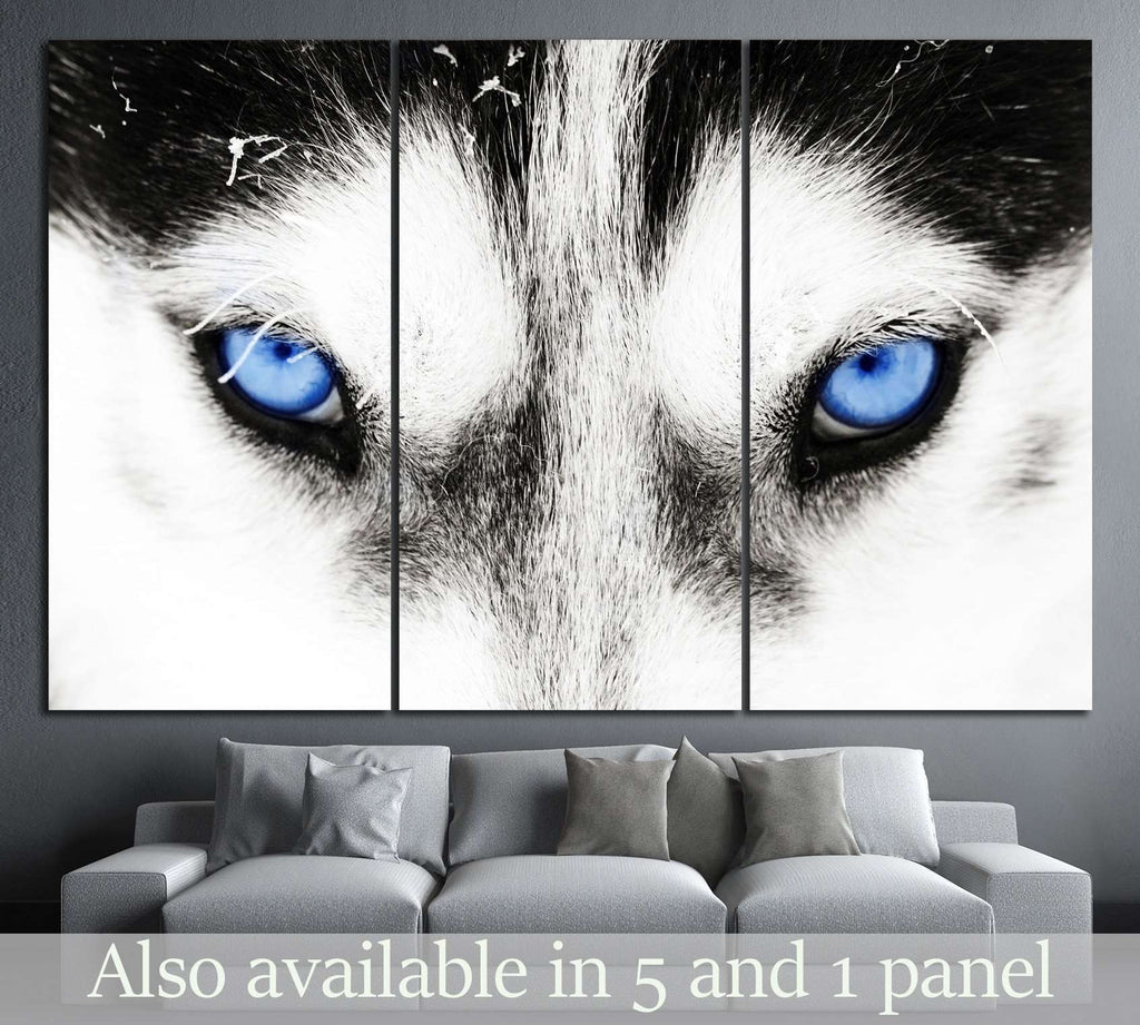 Dogs blue eyes №10 Ready to Hang Canvas Print