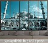 Fantastic view of Blue Mosque (Sultan Ahmet) in Istanbul, Turkey №1789 Ready to Hang Canvas Print