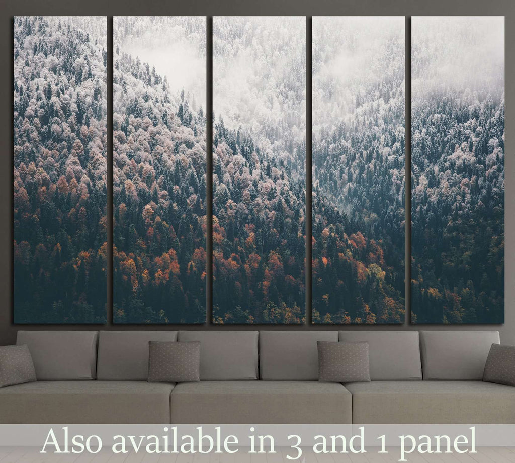 Foggy Autumn Coniferous Forest Landscape №1320 Ready to Hang Canvas Print