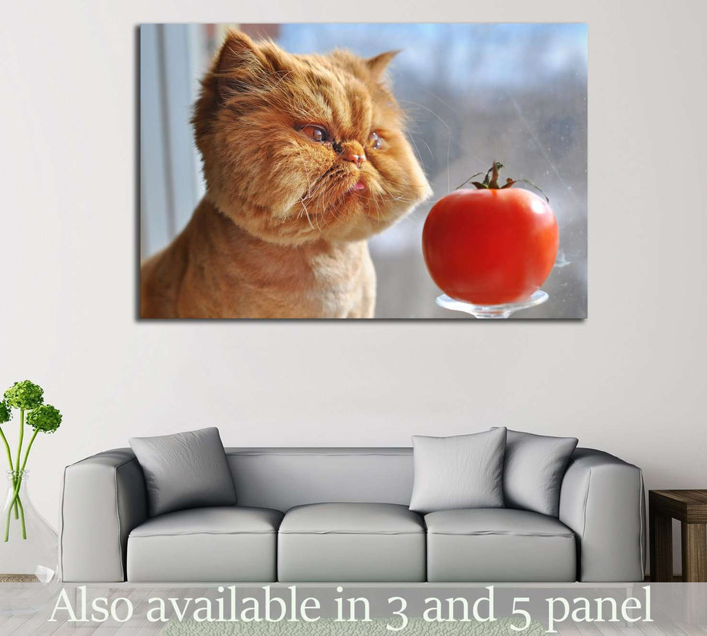 Funny Cat №553 Ready to Hang Canvas Print