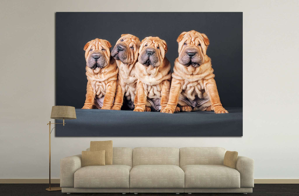 Funny Dogs №12 Ready to Hang Canvas Print