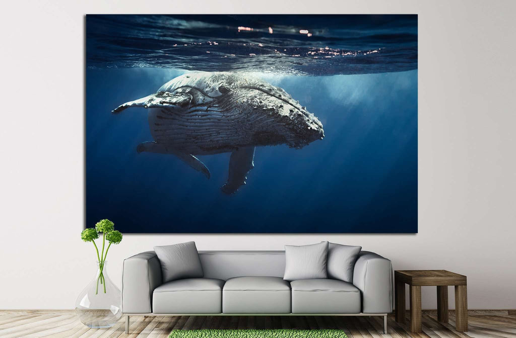 Great Whale №504 Ready to Hang Canvas Print