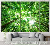 green forest №618 Ready to Hang Canvas Print