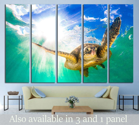 Hawaiian Green Sea Turtle cruising in the warm waters of the Pacific Ocean in Hawaii №2355 Ready to Hang Canvas Print