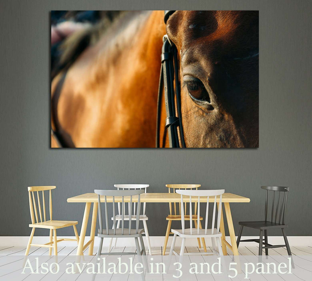 horse eye - soft focus with film filter №1854 Ready to Hang Canvas Print