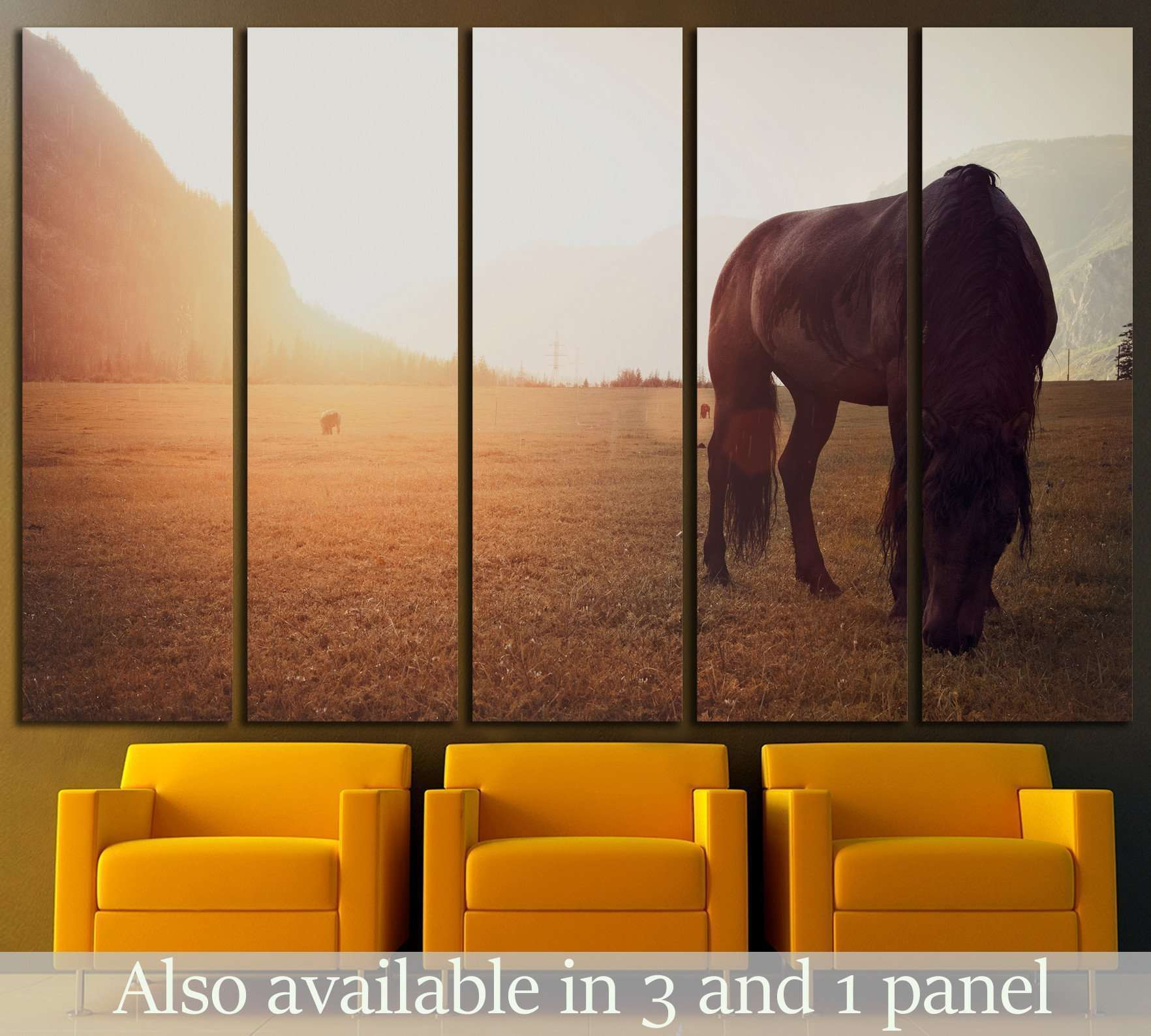 Horse in field №1327 Ready to Hang Canvas Print
