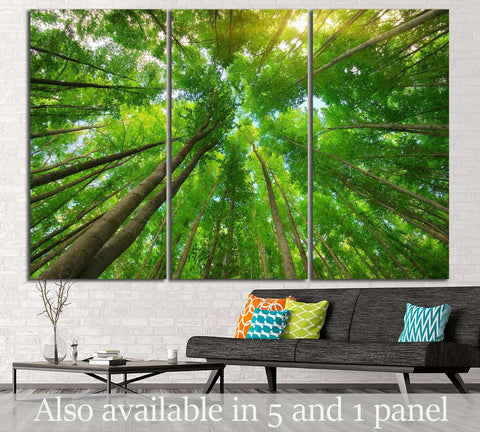 Into the forest №620 Ready to Hang Canvas Print