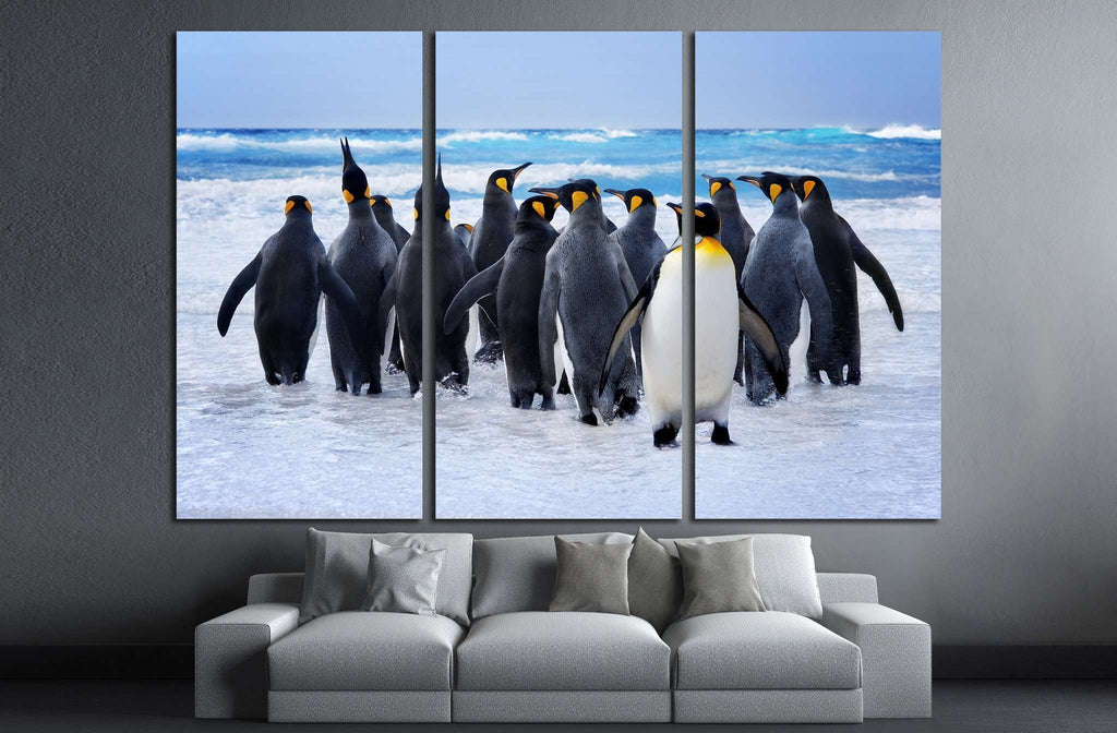 King Penguins heading to the water in the Falkland Islands №1845 Ready to Hang Canvas Print