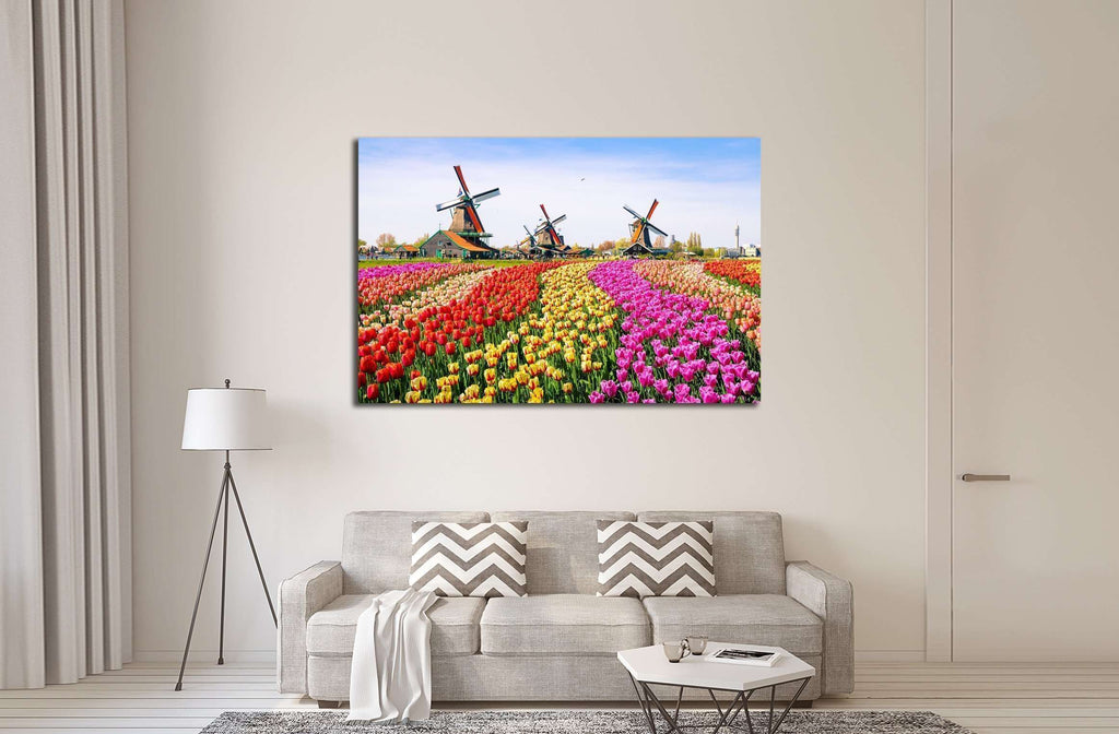 Landscape with tulips, traditional dutch windmills and houses near the canal in Zaanse Schans, Netherlands, Europe №2320 Ready to Hang Canvas Print