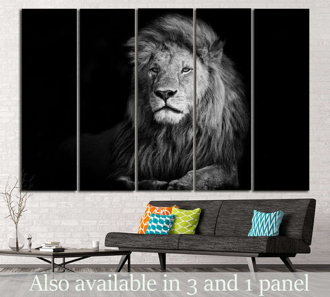 Lion №188 Ready to Hang Canvas Print
