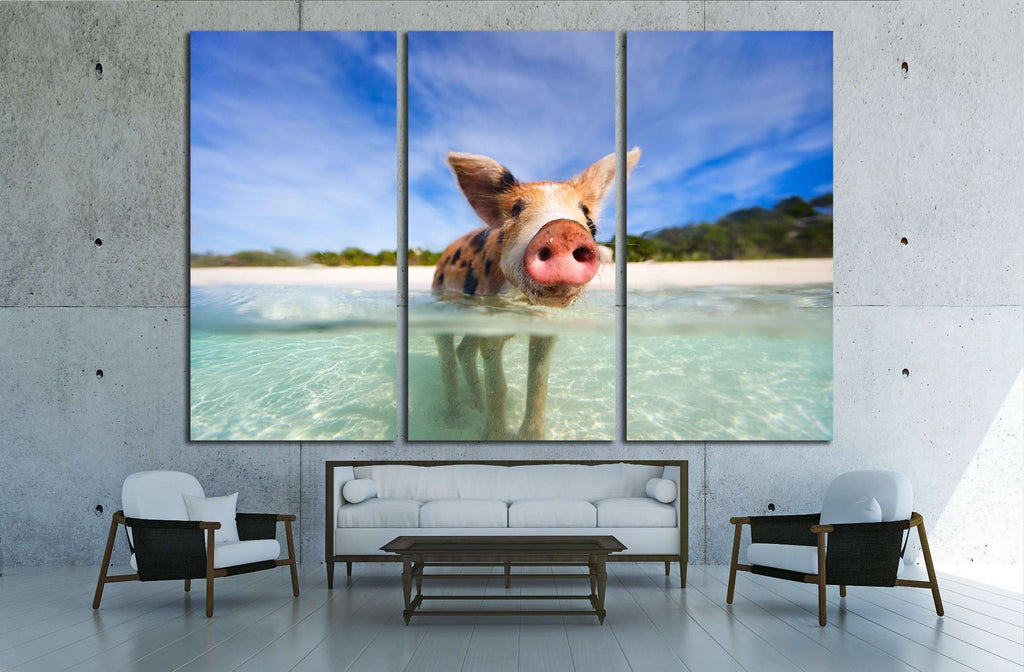 Little piglet in a water at beach on Exuma Bahamas №2350 Ready to Hang Canvas Print