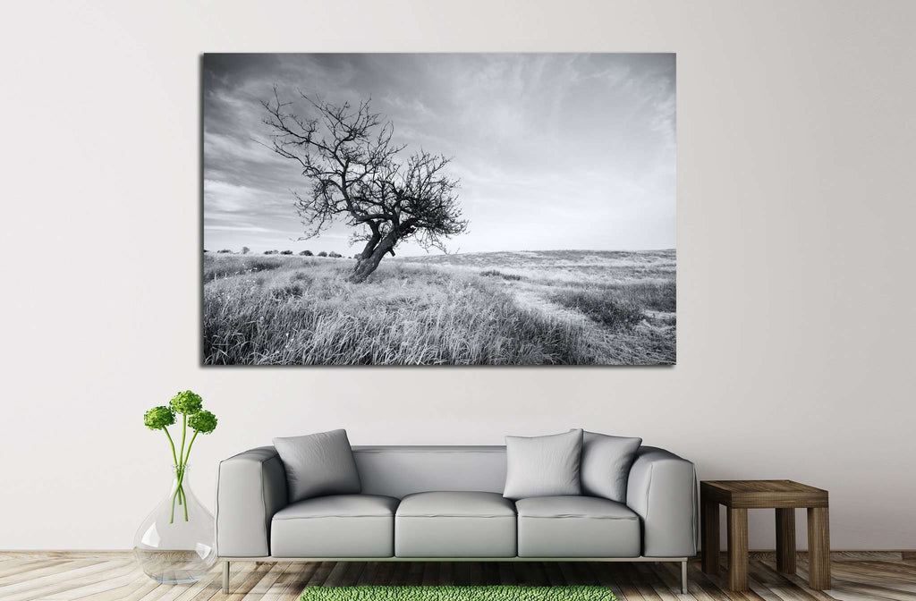 Lonely tree №628 Ready to Hang Canvas Print