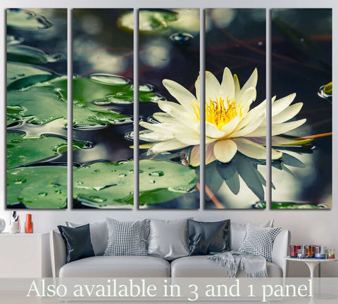lotus flower №698 Ready to Hang Canvas Print