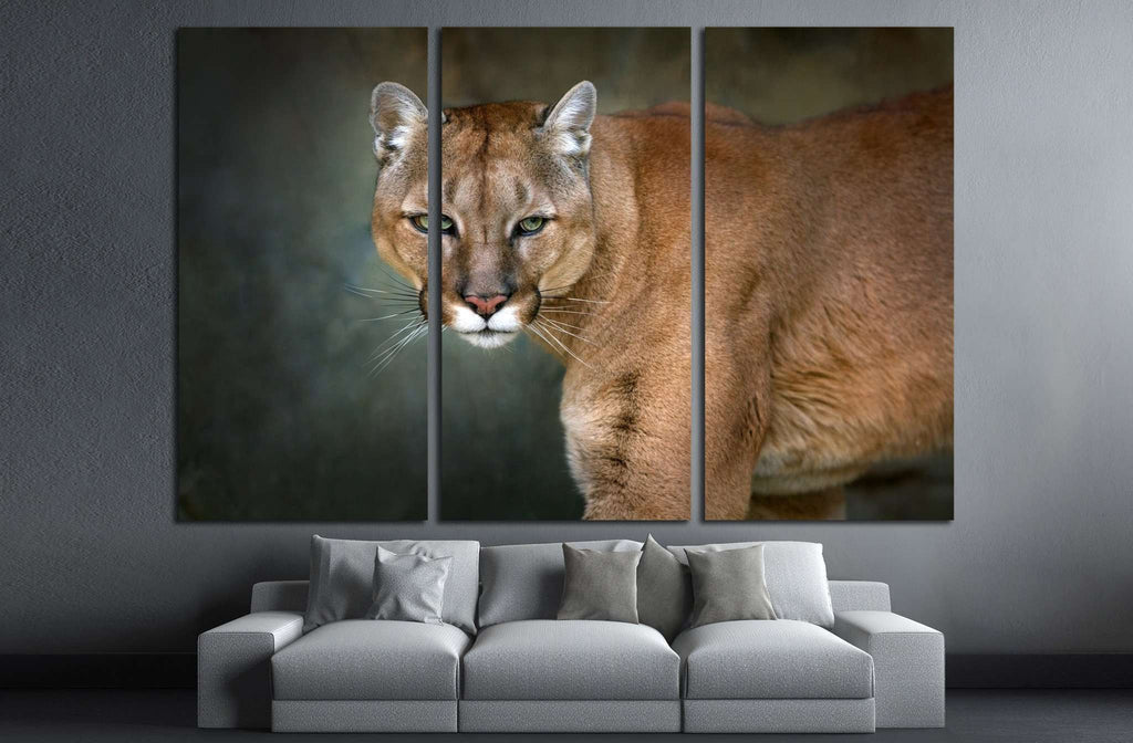 Mountain lion , cougar, puma portrait in motion on dark background №1832 Ready to Hang Canvas Print