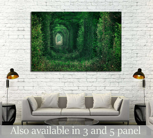 Natural tunnel formed by trees in Romania №2830 Ready to Hang Canvas Print
