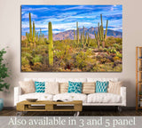 Phoenix, Arizona №1008 Ready to Hang Canvas Print