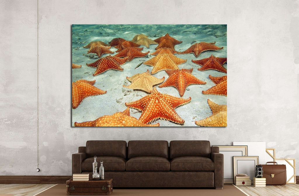 Plenty of cushion starfish on a sandy ocean floor №1395 Ready to Hang Canvas Print