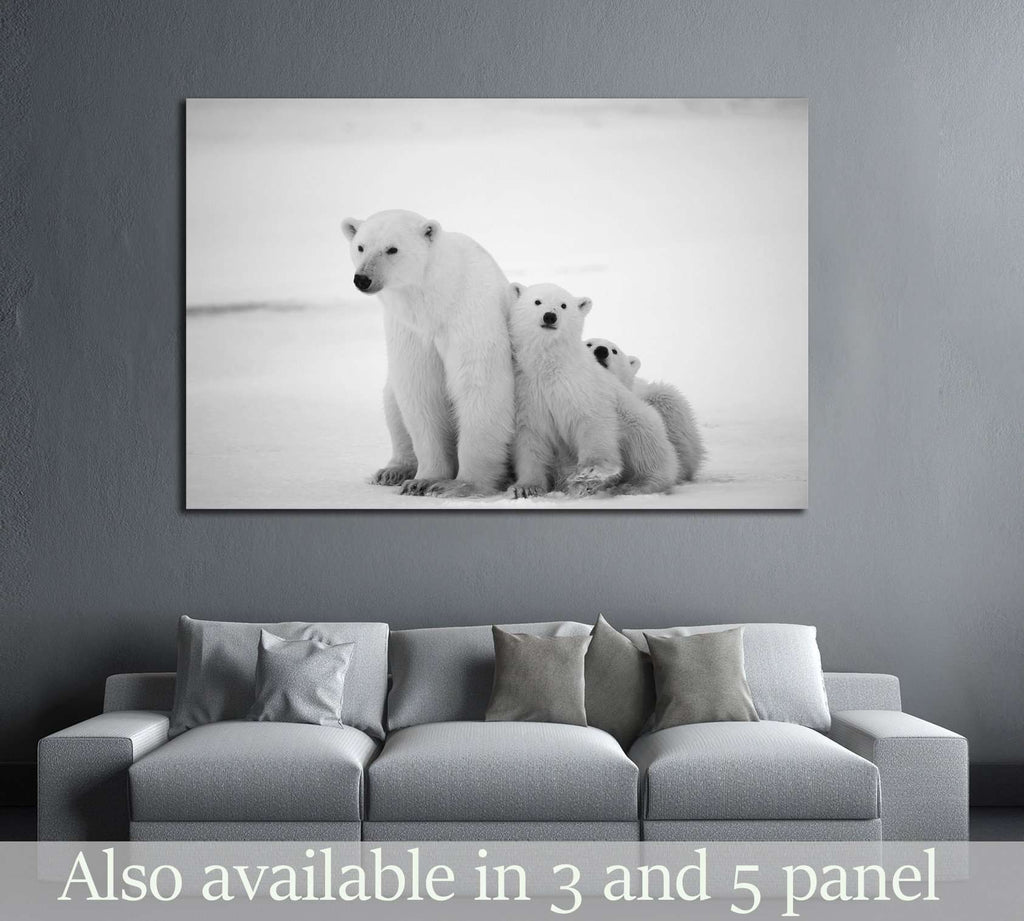 Polar she-bear with cubs. A Polar she-bear with two small bear cubs. Around snow №2338 Ready to Hang Canvas Print
