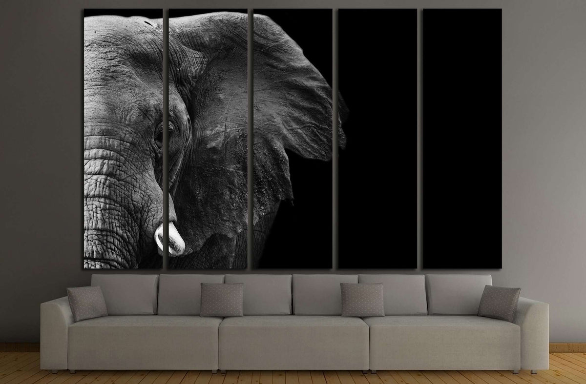 Powerful Image Of An Elephant In Black And White №3262