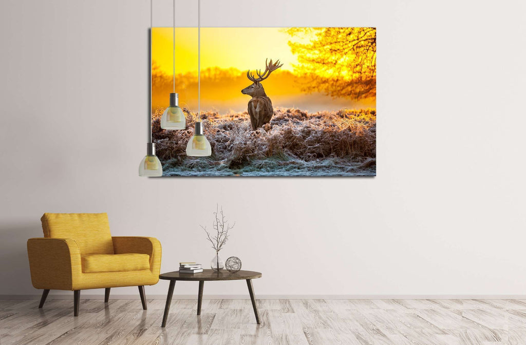 Red deer №2346 Ready to Hang Canvas Print