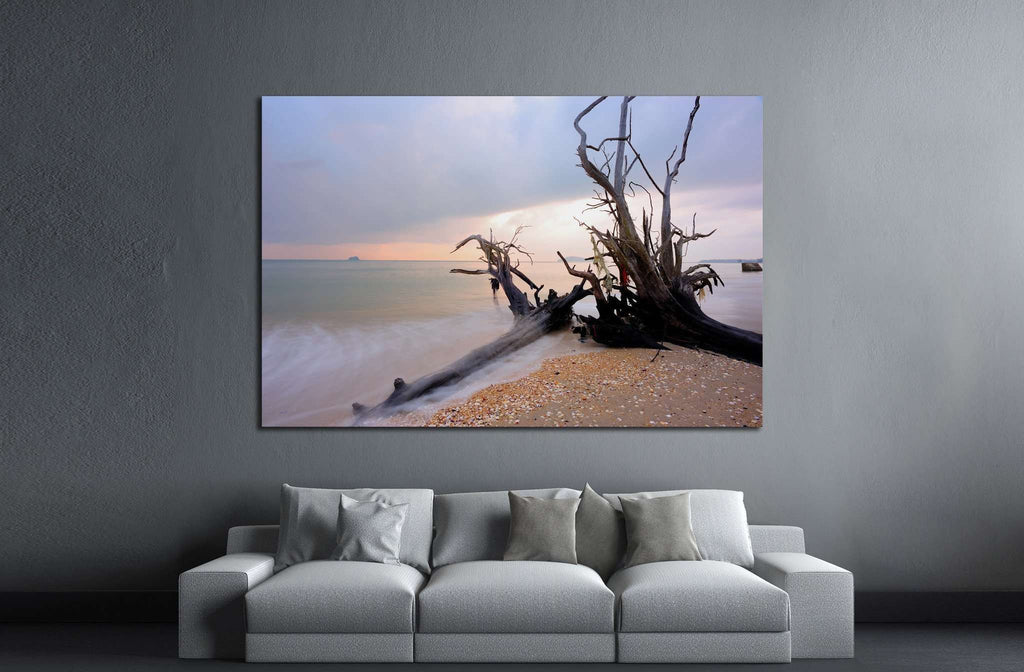 Root on the beach №1971 Ready to Hang Canvas Print