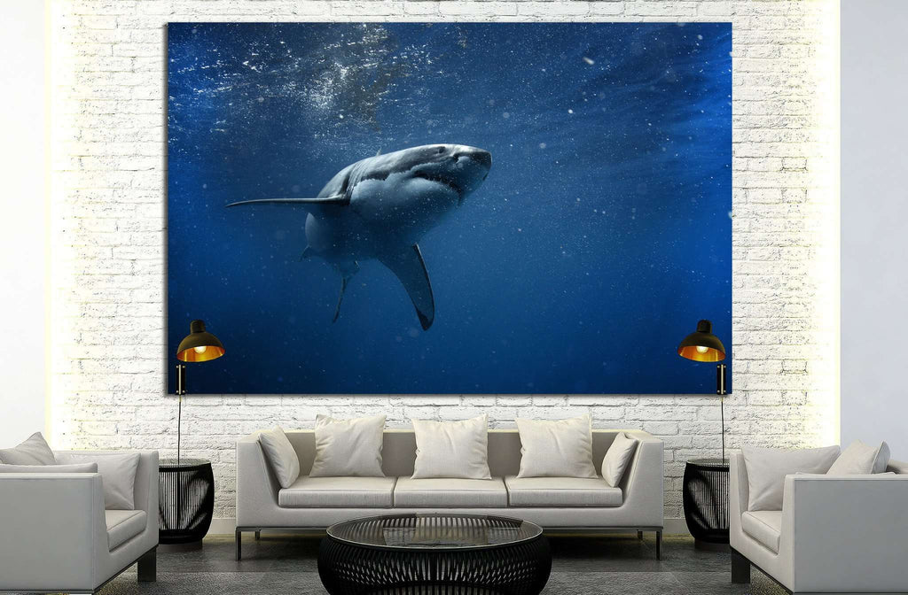 Shark №503 Ready to Hang Canvas Print