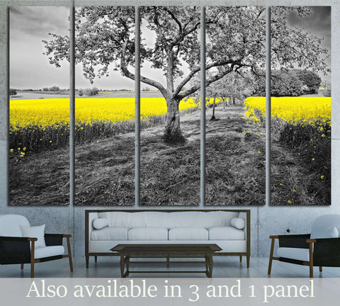 Shining yellow oilseed rape fields in a black and white landscape №2684 Ready to Hang Canvas Print