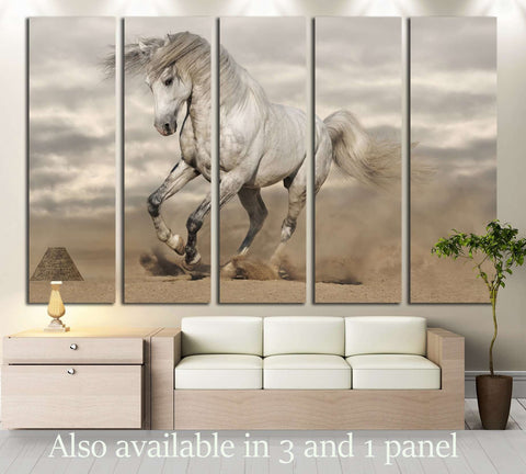 Silver gray Andalusian horse in desert. Toned image №2785 Ready to Hang Canvas Print