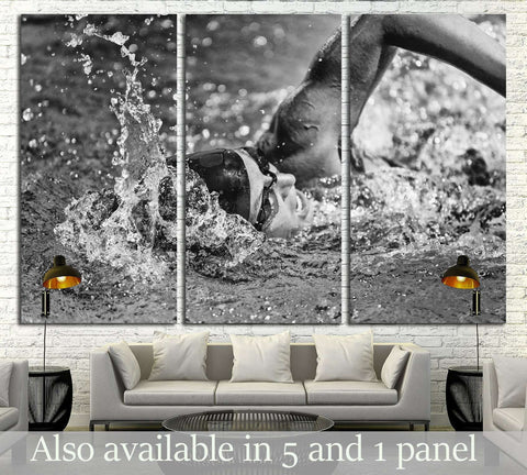 Swimming fast - high speed action shot in black and white №3251 Ready to Hang Canvas Print