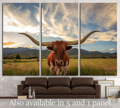 Texas longhorn steer in rural Utah, USA №2364 Ready to Hang Canvas Print