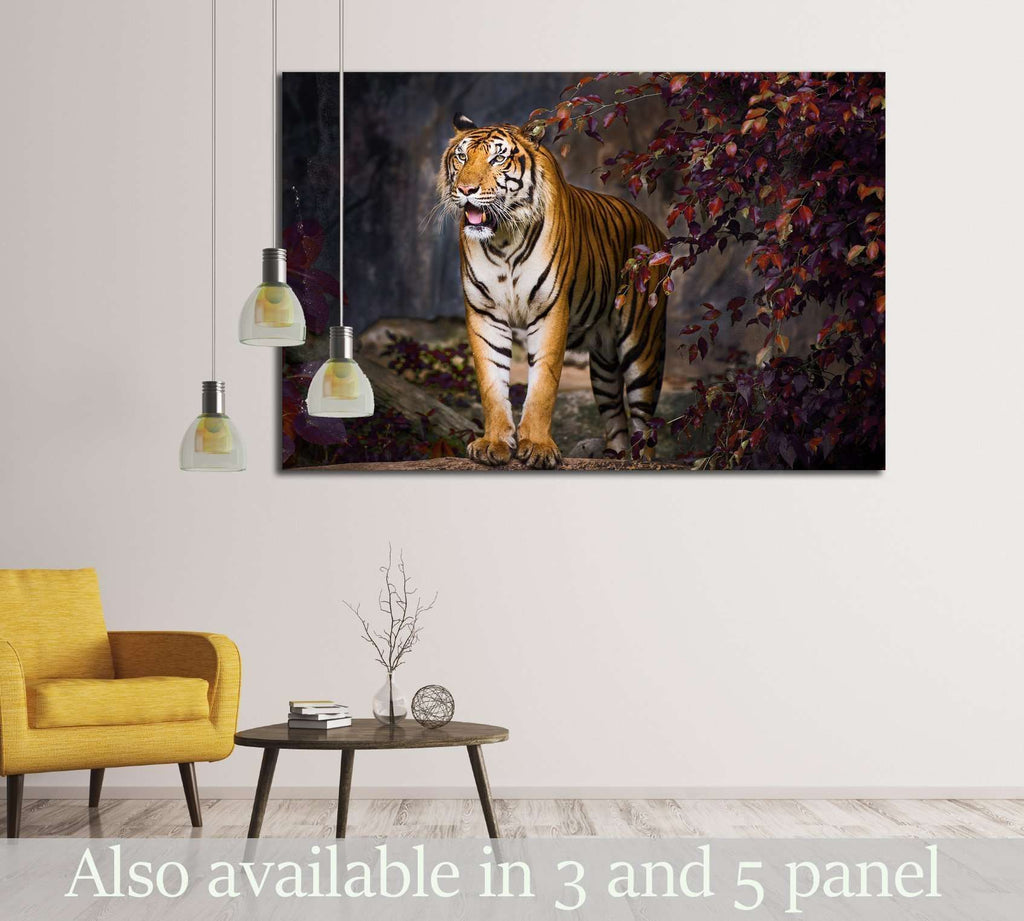 Tiger idle, at the zoo №2363 Ready to Hang Canvas Print