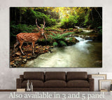 tropical stream and sika deer №1113 Ready to Hang Canvas Print