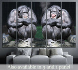 Two chimpanzees have a fun №1114 Ready to Hang Canvas Print