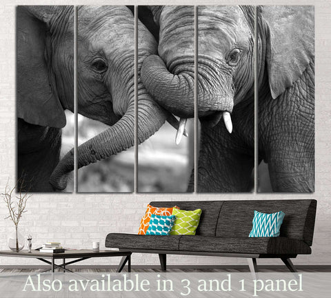 Two Elephants №194 Ready to Hang Canvas Print