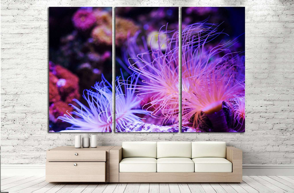 Underwater World, Coral Reef №1421 Ready to Hang Canvas Print