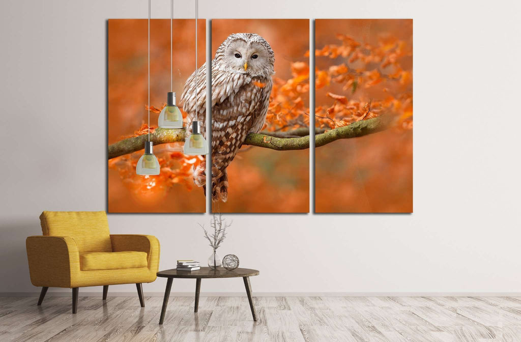 Ural Owl, Strix uralensis, sitting on tree branch, Sweden №1857 Ready to Hang Canvas Print