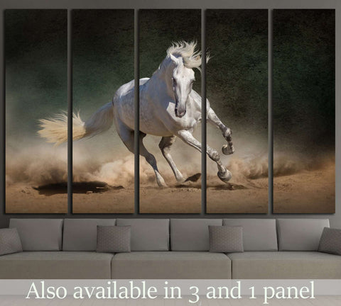 Superior White Andalusian Horse In Desert Dust Against Dark Background №1855 Ready  To Hang Canvas Print