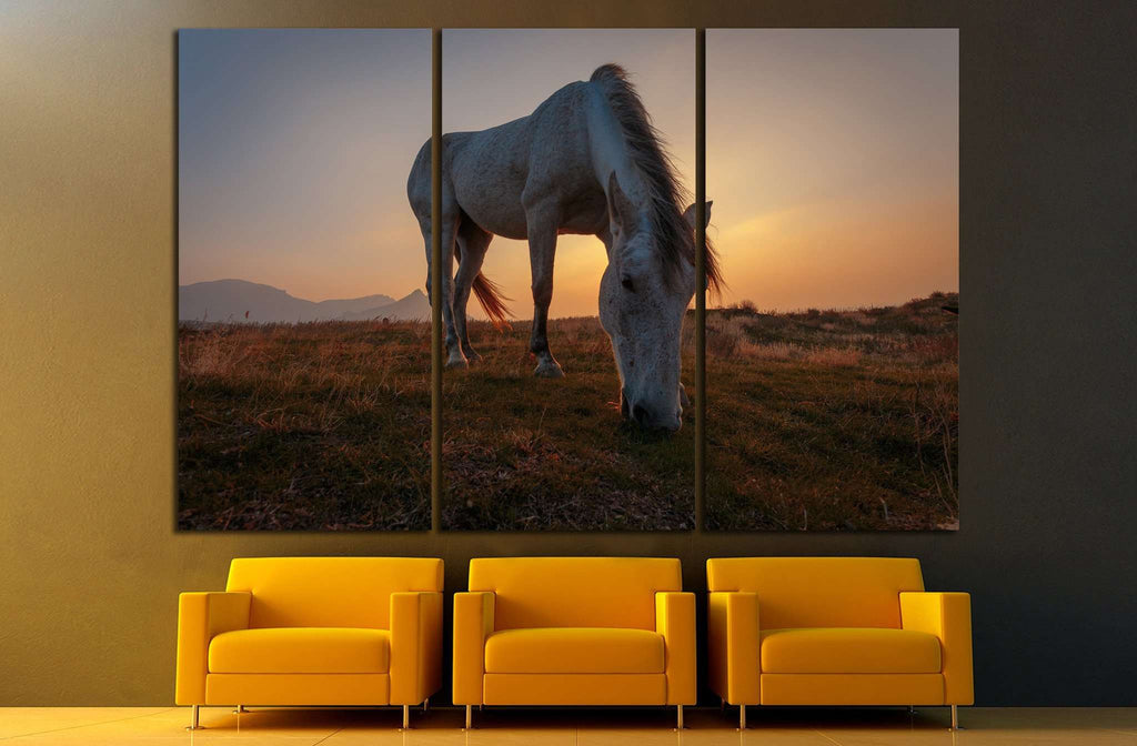 White horse on pasture №1116 Ready to Hang Canvas Print