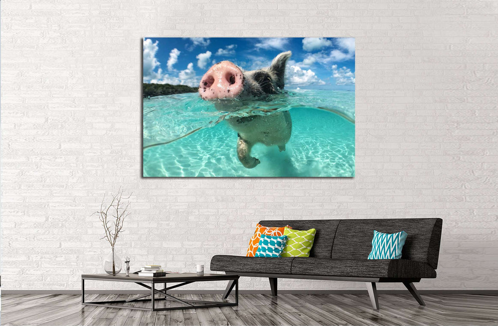 Wild, swimming pig on Big Majors Cay in The Bahamas №2382 Ready to Hang Canvas Print